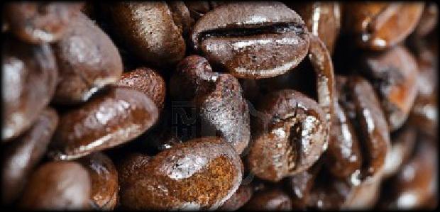 a Kávészemek tanítása.