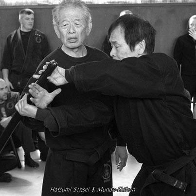 a Bujinkan dojo nem kizárólag a ninpo taijutsu-t jelenti