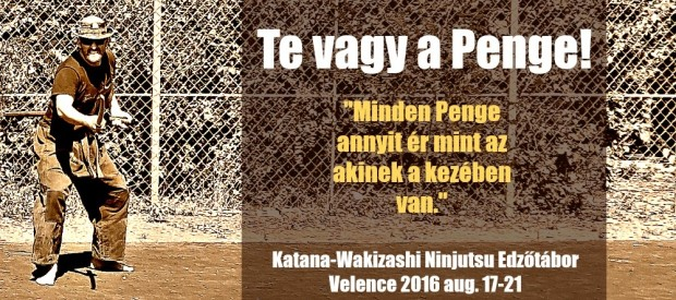 Kenjutsu edzőtábor Velenve 2016 Horváth Ádám Ninjutsu